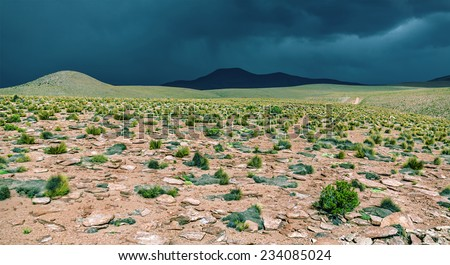 Desert plateau of the Altiplano in the bad weather, Bolivia - stock photo