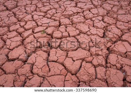 Desert red dry and thirsty soil with last tree soil crack background - stock photo