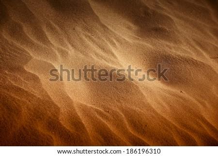 Desert sand closeup texture with golden sunlight  - stock photo
