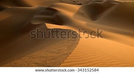 Desert sand dune - stock photo