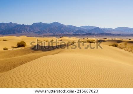 Desert Sand Dunes - stock photo