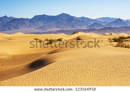 Desert Sand Dunes, Death Valley, California, USA - stock photo