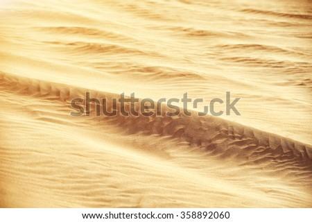 Desert sand dunes texture - stock photo