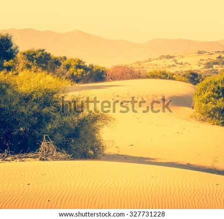 Desert sand dunes with mountain view on horizont. Semi-desert landscape with bushes and hills, hot climate zone.  - stock photo