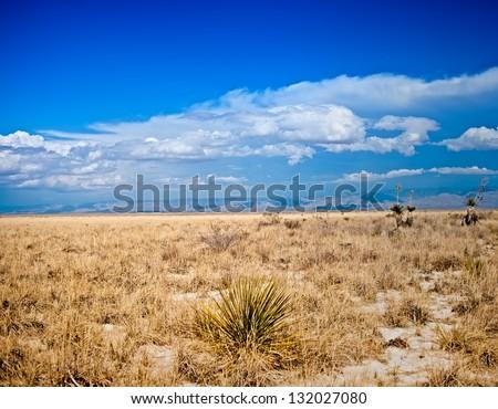 Desert Series, Various Concepts - stock photo