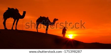 Desert sunrise with camel and man.
