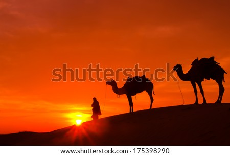 Desert sunrise with camel and man. - stock photo