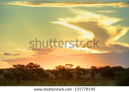 Desert sunset and storm clouds, Grootkolk, Kalahari desert, South Africa. - stock photo