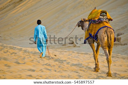 Desert Taxi - Hire a camel to ride through the dunes