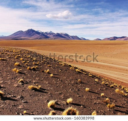 Desert view in Bolivia/Altiplano/Flat desert/Uyuni salar flat near Potosi - stock photo
