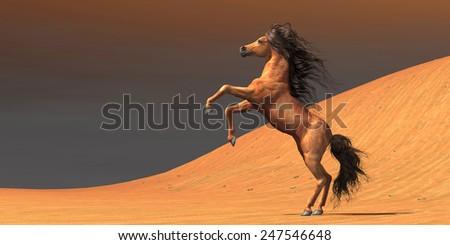 Desert Wild Horse - A wild Arabian mare rears up in a desert environment full of red sand dunes. - stock photo