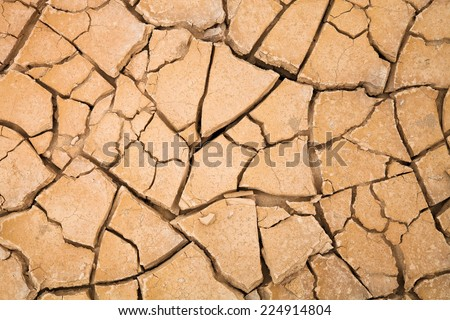 Desert with cracked ground. background, texture - stock photo