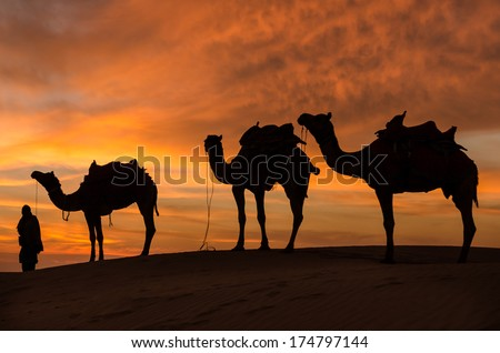 Desert with dramatic sky with camel and man  - stock photo