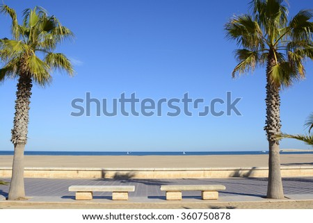 Deserted sandy beach with palm trees and seafront promenade in Valencia, Spain