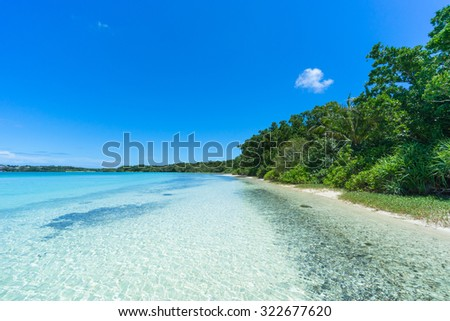 Deserted tropical beach along jungle with clear turquoise water and blue sky, Ishigaki Island of the Yaeyama Islands, Okinawa, Japan - stock photo