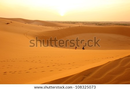 Deserts and Sand Dunes Landscape at Sunrise