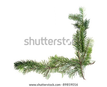 Design element.  Corner of spruce branches - stock photo