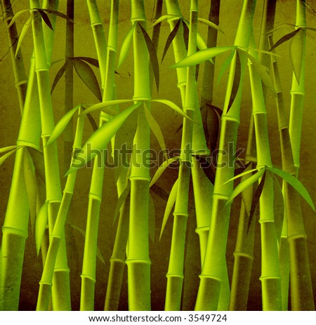 design of bamboo trees, illustration background