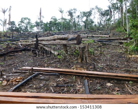 Destroyed tropical rainforest in Amazonia. Image taken on 7th March 2013 - stock photo