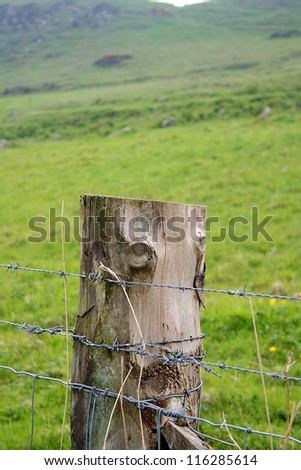 Detail, Barbed Wire Fence - stock photo