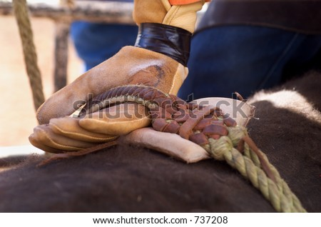 Detail close up of Rodeo Cowboy's hand in leather glove competing in Bull riding  Competition
