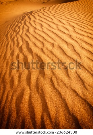 Detail of a beautiful desert sand dune - stock photo