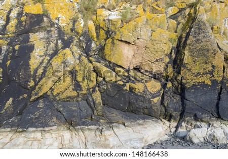 detail of a colorful rock formation near Mont Saint Michel Abbey in Lower Normandy (France) - stock photo