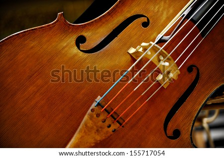 Detail of a double bass string music instrument - stock photo