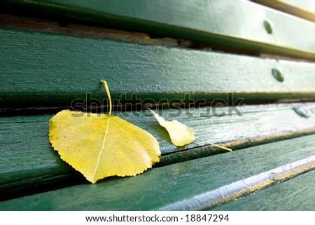 Detail of a green bench in a park with fallen leafs - stock photo