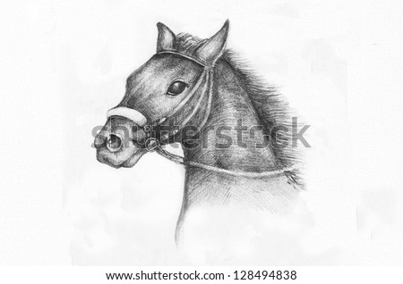 Detail of a horse etude, pencil drawing on white paper artist at age of 15. - stock photo
