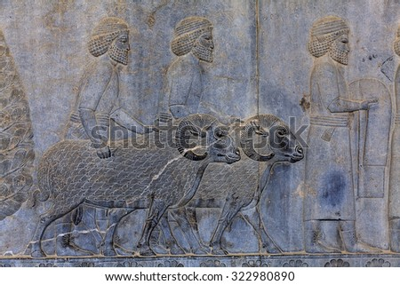 Detail of a relief of the eastern stairs of the Apadana at Persepolis in northern Shiraz, Iran