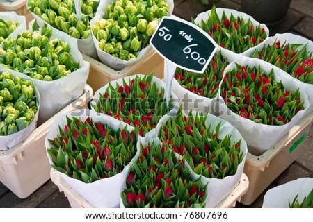 Detail of Amsterdam flowers market - stock photo