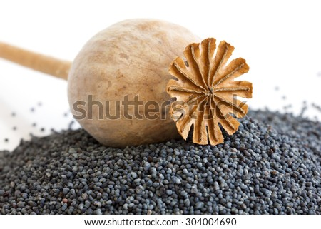 Detail of dried poppy seed pod resting on heap of seeds.