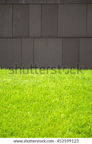 Detail of green grass and stone wall