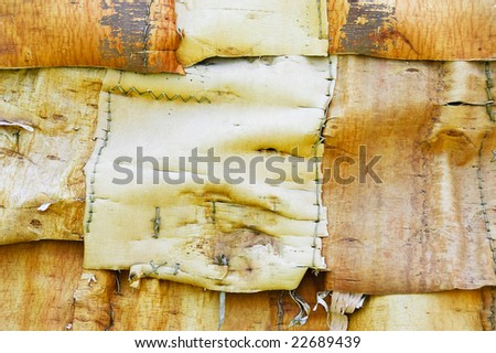 Detail of Huron longhouse covered with white birch bark