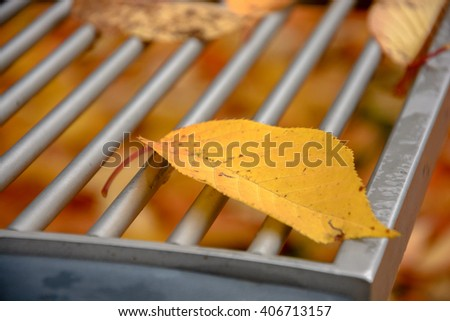 Detail of leave on bench in autumn