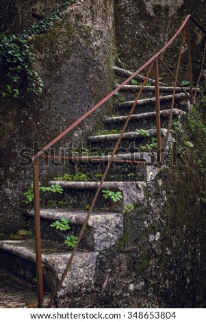 Detail of old stone stairway covered with fallen Autumn leaves and moss - stock photo