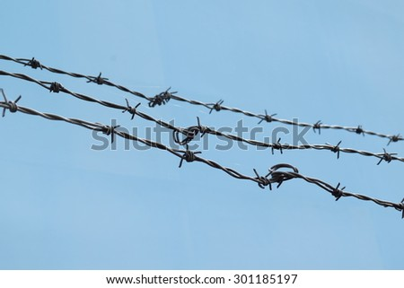 Detail of razor wire