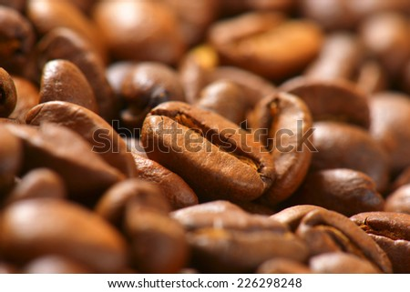detail of roasted coffee - stock photo