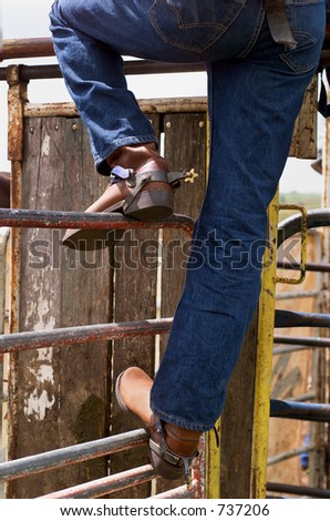 Detail of Rodeo competitor standing on fencing watching the action