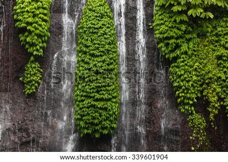 Detail of Secret Bali jungle Waterfall called Banyumala - stock photo