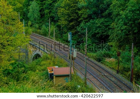 detail of semmeringbahn railroad leading through a dense forest in austria