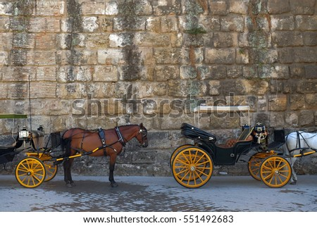 Detail of Spanish touristic carriages and horses waiting in the shade against a stone wall