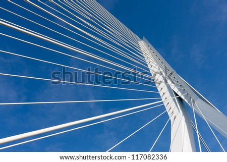 Detail of the cable stayed Erasmus bridge in Rotterdam,  the Netherlands