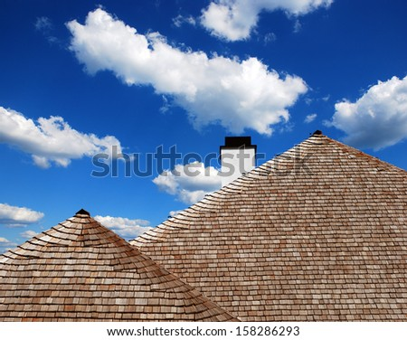 detail of the roof of wooden shingles and thatch