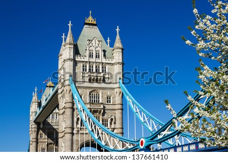 Detail of Tower Bridge, London, on a beautiful spring day, framed by pretty white blossoms. - stock photo