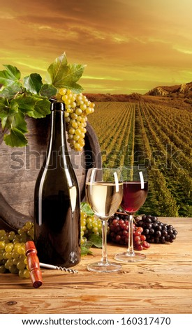 Detail of wine with keg on vineyard - stock photo