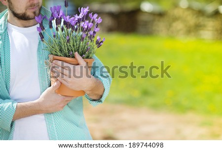 Detail of young male gardener holding a pot with lavender - stock photo