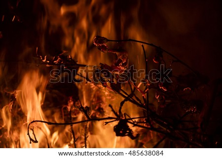 Detail on the fire with burning twigs, logs and leaves