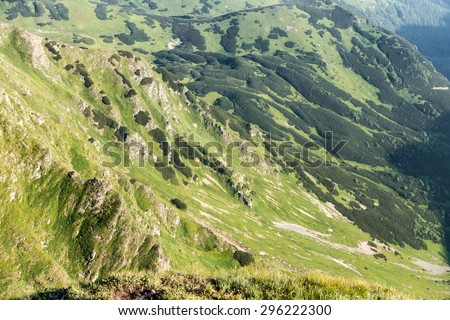 Detail view of mountains valley with grass, rocks and trees - nature texture - stock photo